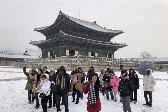 5D4N Korea Winter Experience 2019